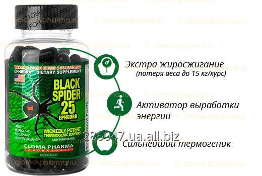 Купить Жиросжигатель Черная Вдова Black Spider (100 caps)