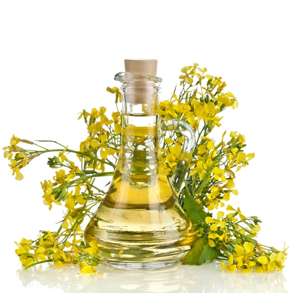 Купить Unrefined rapeseed oil