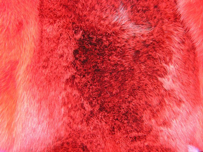 Купить Мех кролика кирпичного цвета