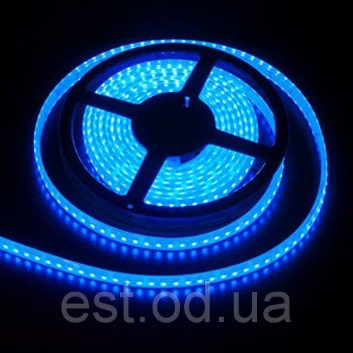 Купить Лента светодиодная SMD3528 120LEDх4LM 9,6W голубая влагозащищенная