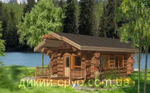 Купить Проекты деревянных домов (Дикарь 40)