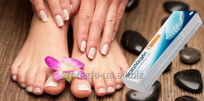 Buy Ekzolotsin - means from a foot fungus