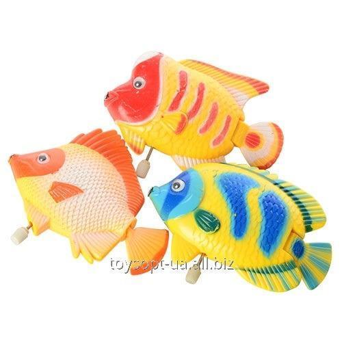 Водоплавающая игрушка 2224 (360шт) заводная, рыбка, 3 вида, в кульке, 9-6-2см (шт.)