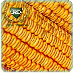 Семена кукурузы Аквазор