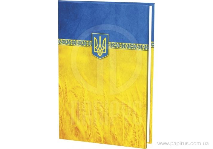 Купить Папка на подпись, полноцветная, желто-голубая