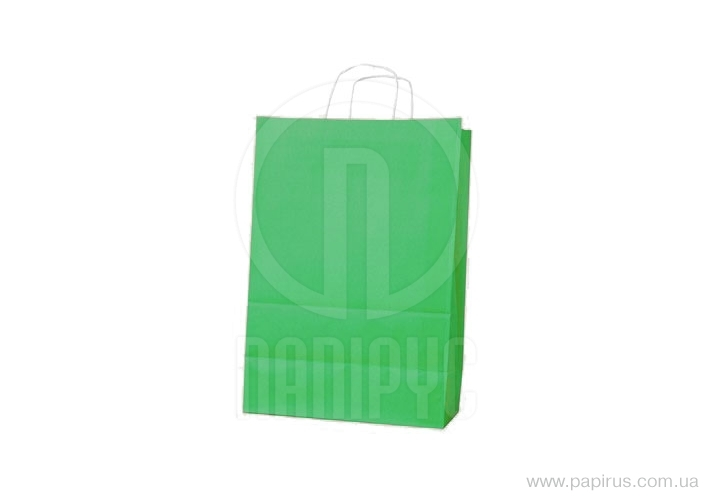 The package of Ecobag handles the size is 400х180х390 mm green