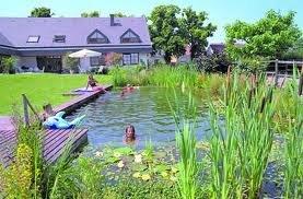 Цеолит натуральный для очистки ставков, прудов и аквариумов