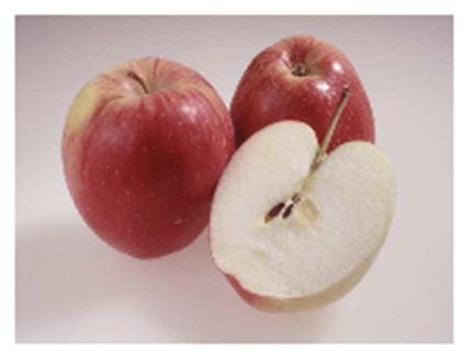 Саженцы яблони Рекардо ®
