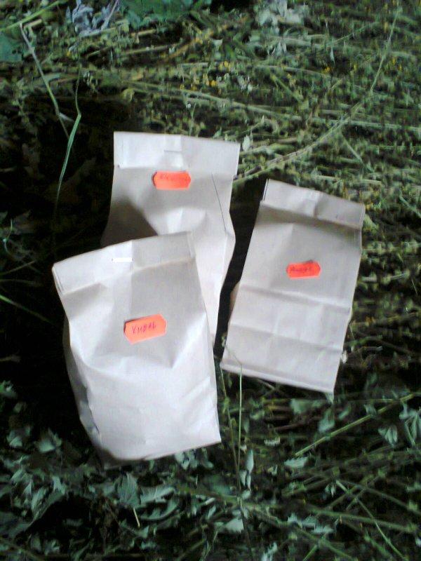 Купить Чай из репешка