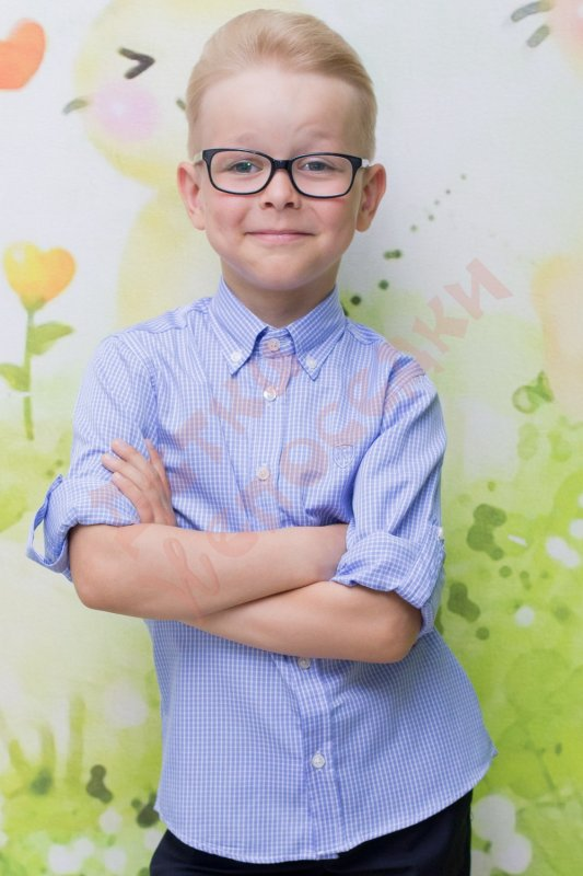 Купить Рубашка длинный рукав для мальчика Эмблема WR Woorage, серый в клетку, 104, 104-164, 104 см