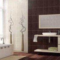 Buy CERSANIT tile Collection - KARINA