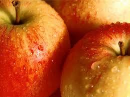 Яблоки купить Сумская обл.