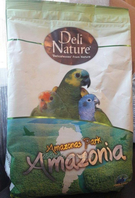 Buy Forage for Amazon Deli Nature Amazonas Park Amazonia