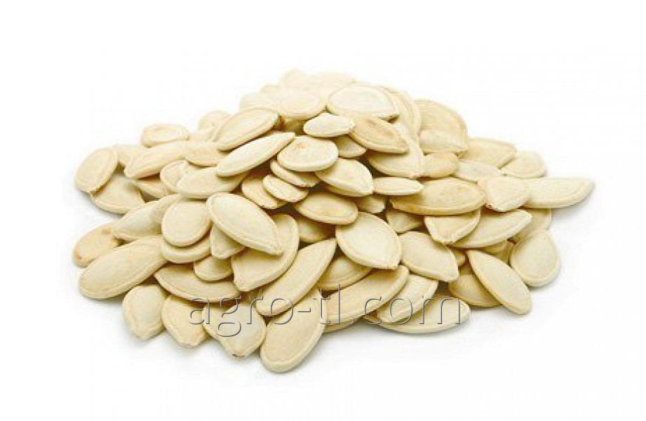 Dýňová semena odrůdy ukrajinského plodný