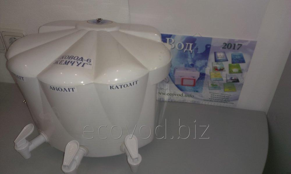Buy The filter for water of bulk type Ekovod 6 Pearls.