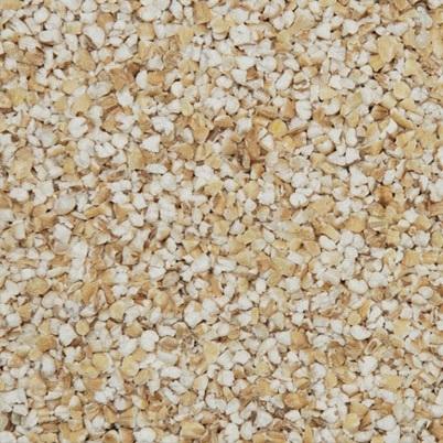 Noten kernels