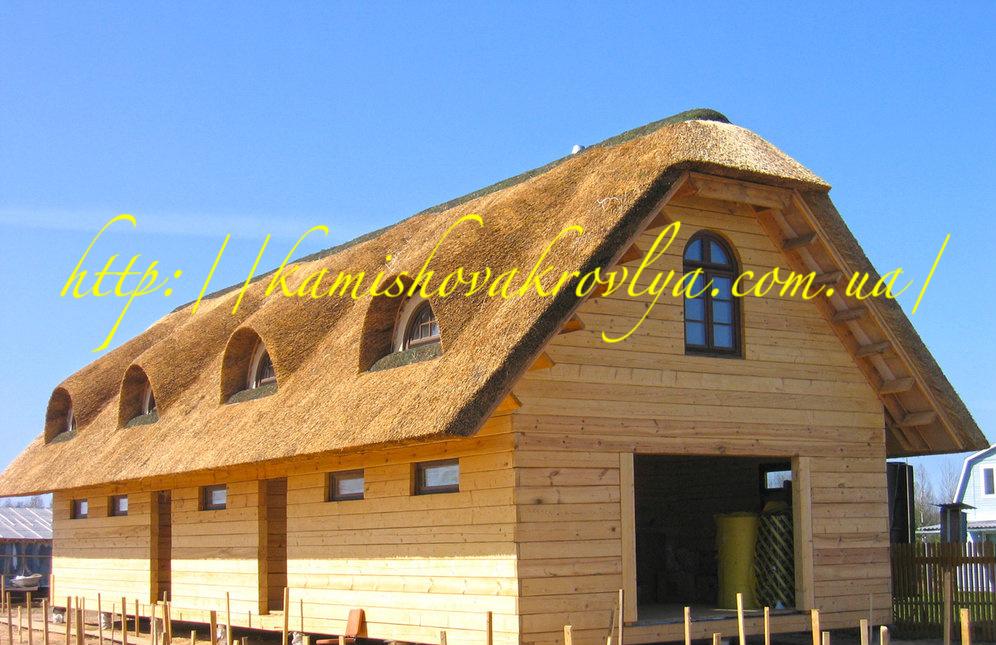 Камыш для крыши