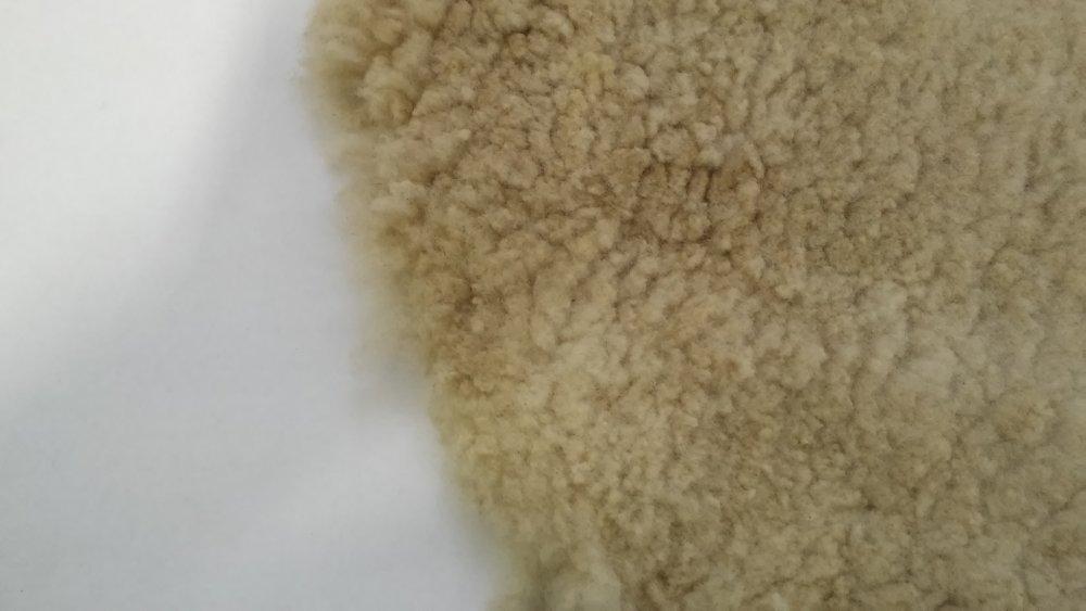 Шкіра овеча