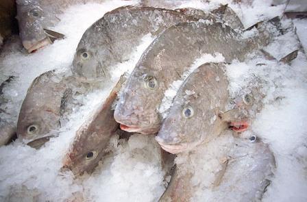 В Красноярске приостановлен оборот мороженой рыбы