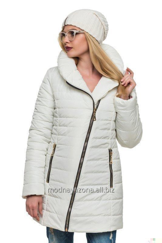 Купить Зимняя куртка без капюшона.