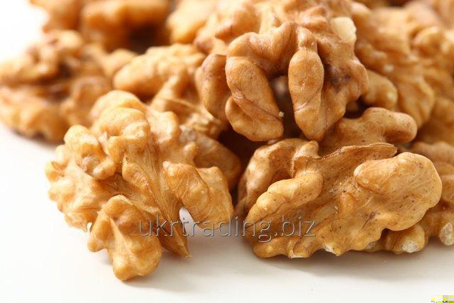 Walnuts nuts Kernels and in Shell Organic Fresh Wholesale Ukraine/Best prices