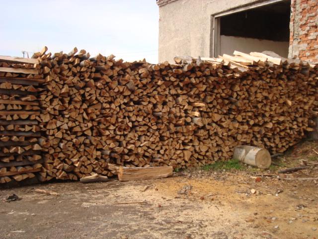 Купить Древесина(бук)покупка дров твердых пород