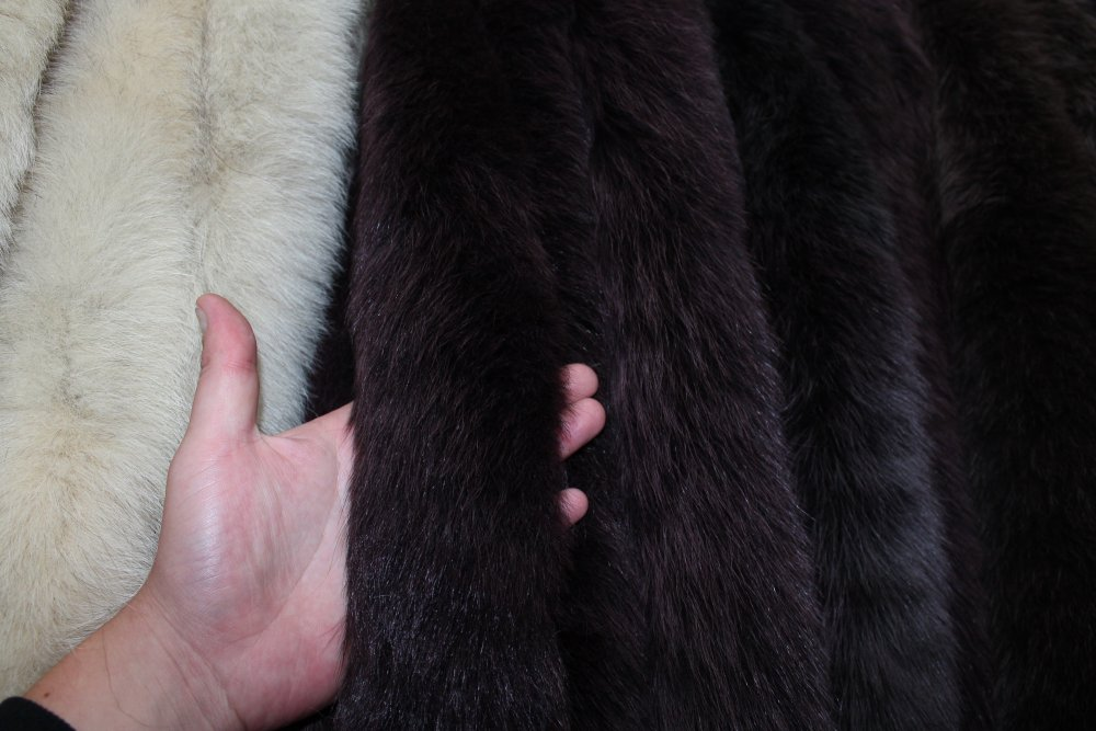 Fur edge from a polar fox of dark and claret 70 cm