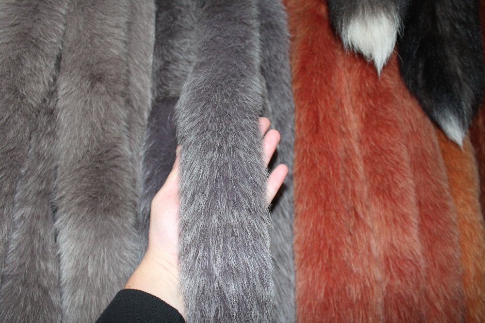 Buy Fur edge from a polar fox of a cappuccino of 70 cm