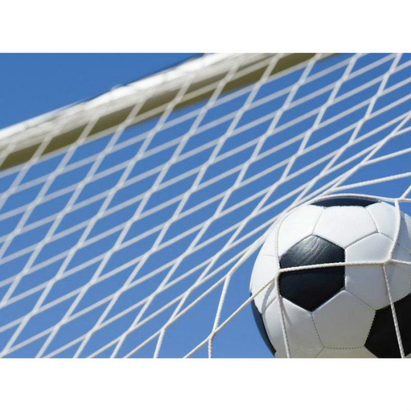Сетка футбольная профи