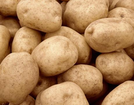 Купить Картофель сортовой, купить сортовой картофель, сорт Миневра, Ривьера, Белла - Роза, Тирас Кобза