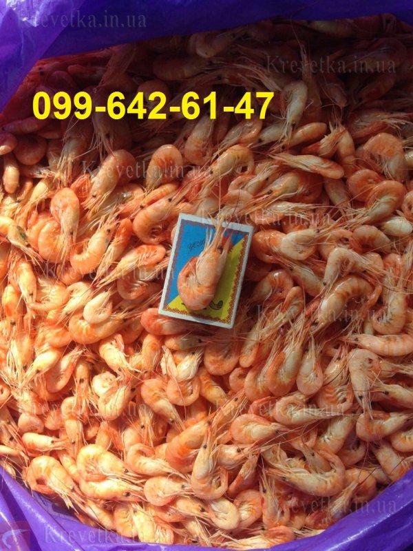 Купить Креветка новый улов