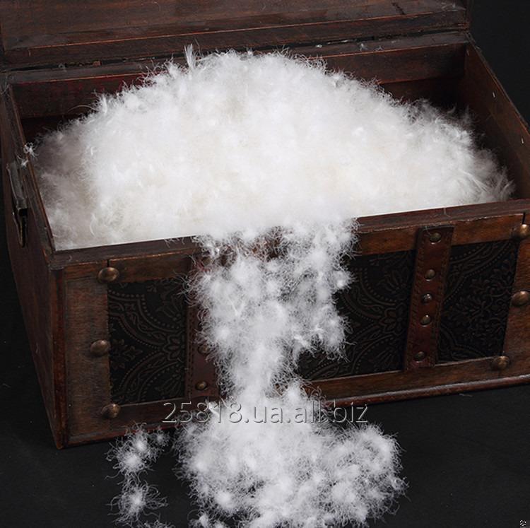 Купить  Пух белый\серый 92% упругость FP 750-850+
