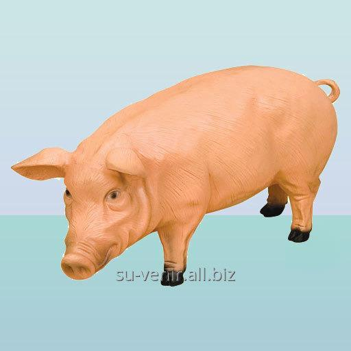 Большая копилка для денег Свинья (Б)