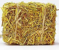 Купить Солома – ржаная – стоимость 480.00 за тонну.