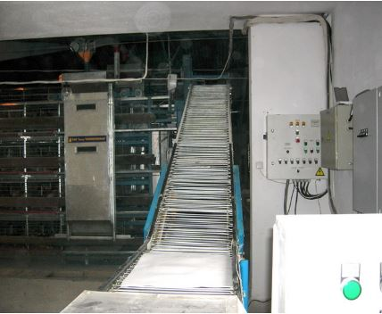 Machines and equipment for poultry raising