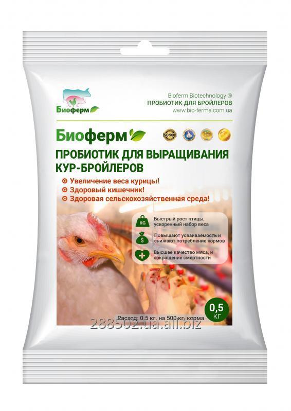 Купить Пробиотики для выращивания Кур-бройлеров, уток, гусей, перепелов