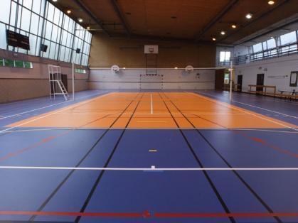 Купить Линoлеум спортивный Grabo Sport