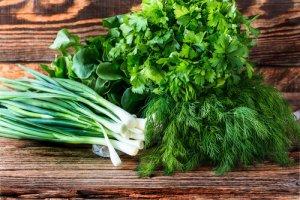 Купить Свежая зелень,салаты,пряные травы
