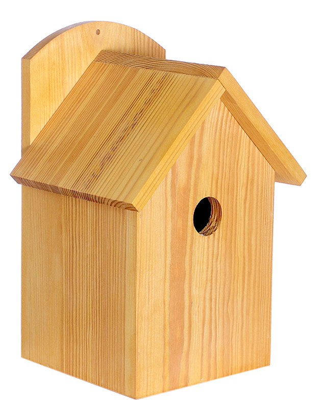 Buy Nesting box (a lodge for birds)