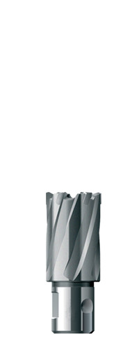 Кольцевая фреза, глубина 30, ø мм 90