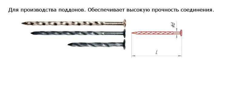 Buy Nail screw