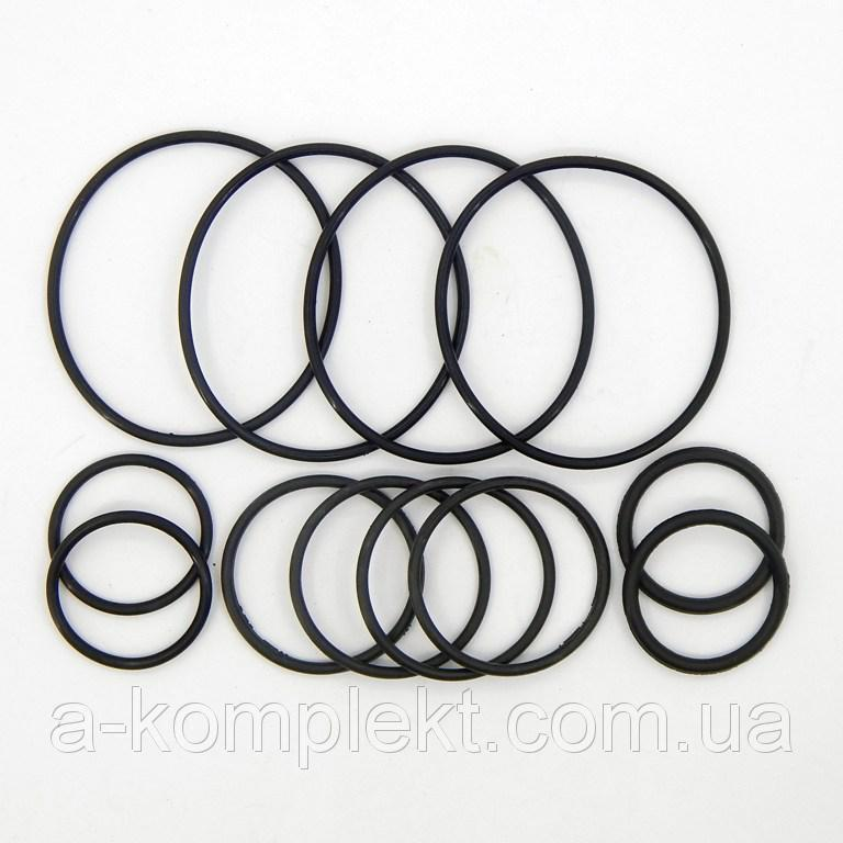Набор РТИ колец уплотнения фланцев НШ К-700, К-700А, К-701 (арт.206)