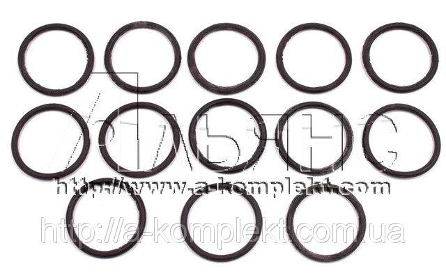 Набор РТИ колец уплотнения фланцев гидрораспределителя Р-200 (арт.212)