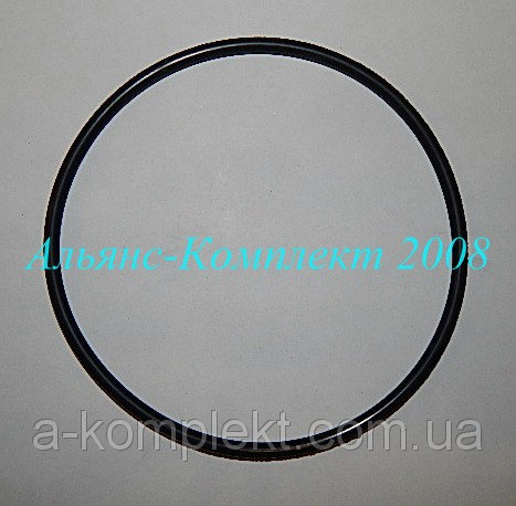 Buy Rubber sealing ring 165 * 175-58 (162 x 5.8)