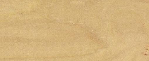 Панель для внутренней обшивки сауны Осина, Saunaboard