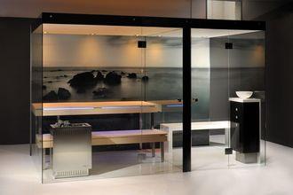 Стеклянная перегородка в сауну, хамам и спа в эксклюзивной комплектации 2200х4200х2600 мм