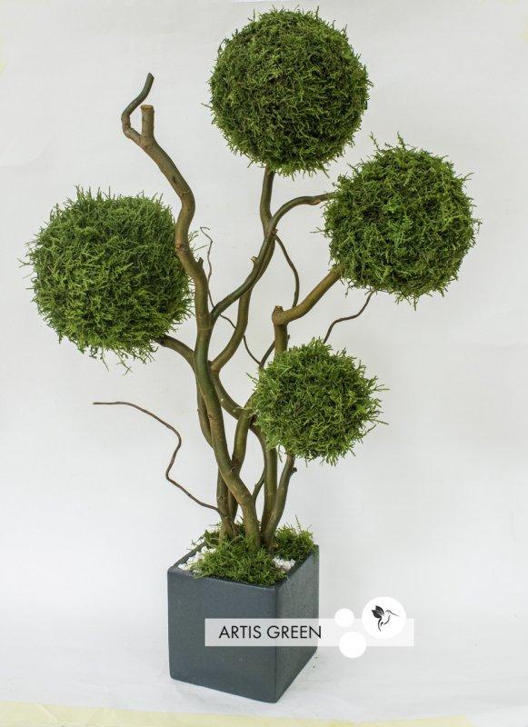 Купить Дерево из лесного мха, топиарий 60 cm, T12