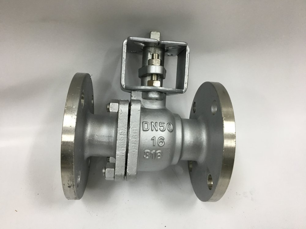 DN50 ball valve (AISI316) under the drive