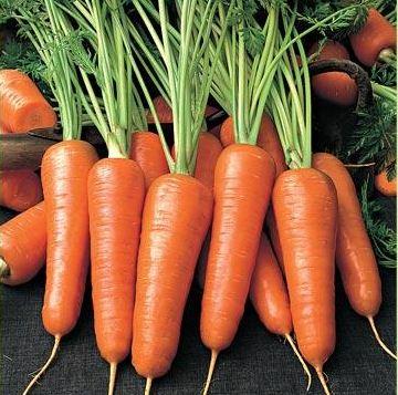 Купить Морковь Украина