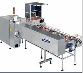 Купить Оборудование для сортировки яиц ORION 25/30 до 30 000 в час